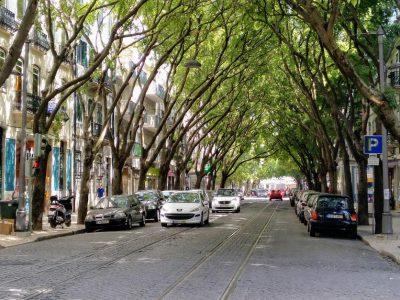 rua ferreira borges en campo de ourique_lisboa