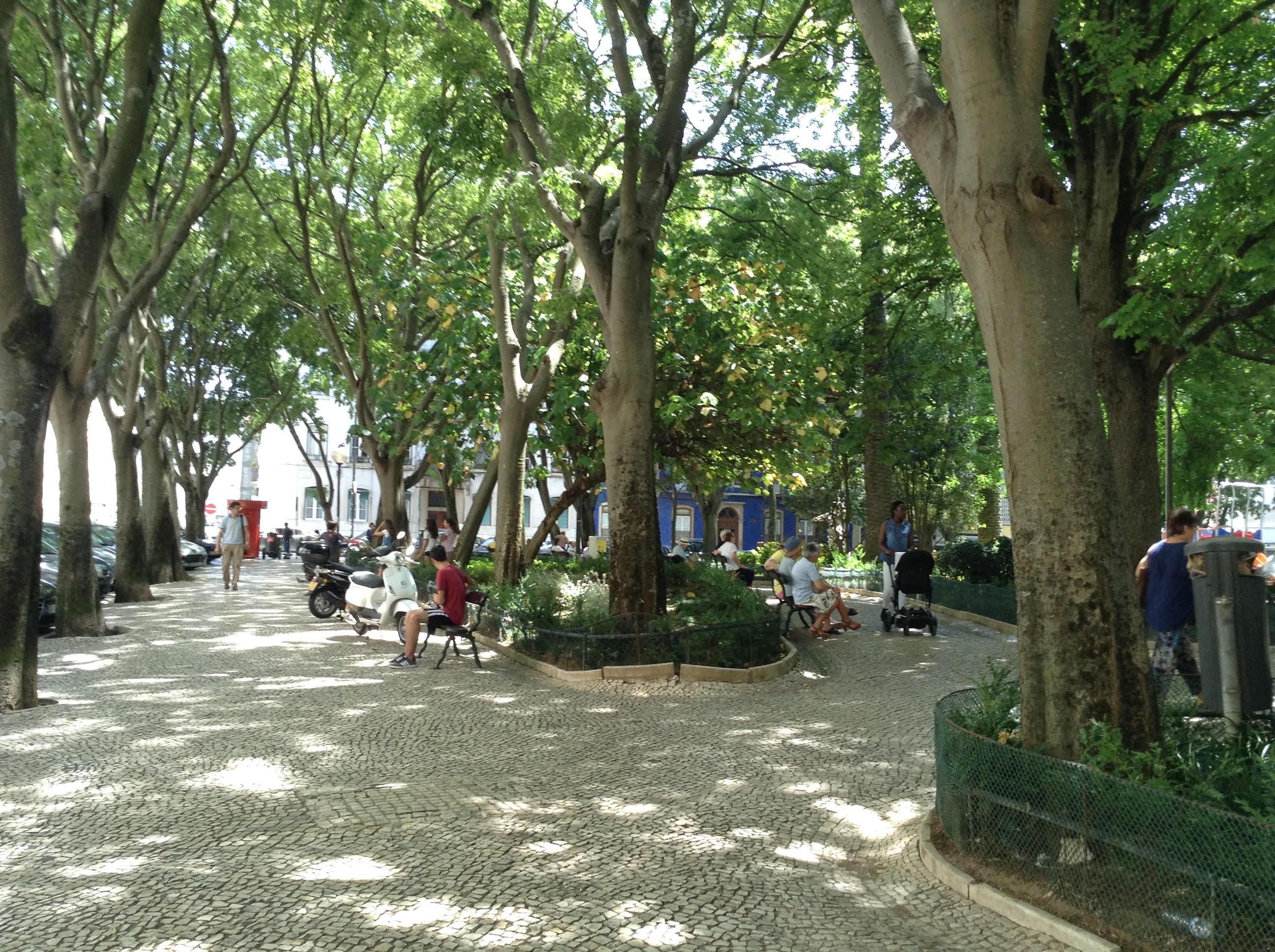 parque teofilo braga jardim da parada em campo de ourique lisboa