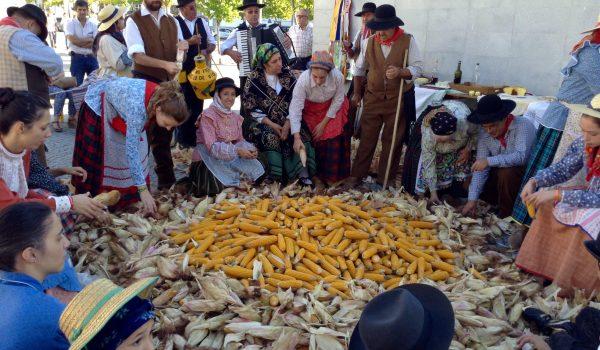 fiesta agricola castelo vide