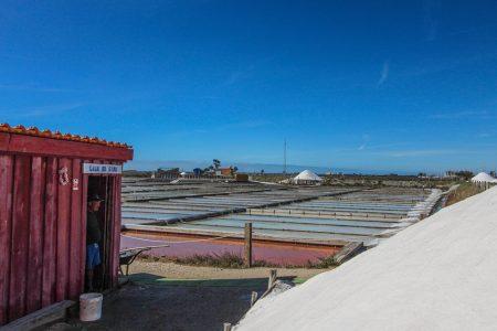 """De siempre, la producción de sal ha jugado un papel importante en la economía de la región. Podrás ver de cerca el trabajo de los """"marnotos"""", observar flamencos y ver salicornias (fauna y flora local)"""