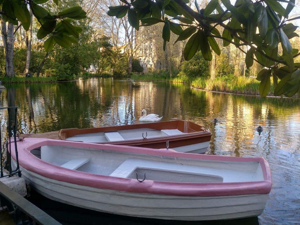 estanque_cisnes_barcas
