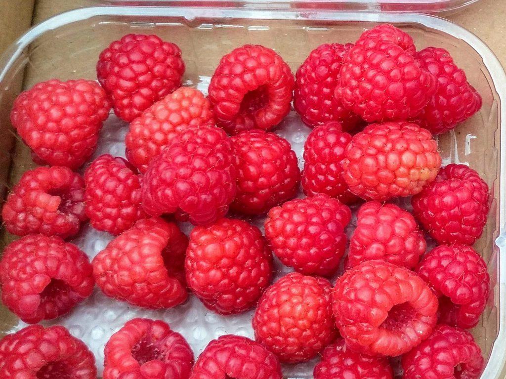 frutos_rojos